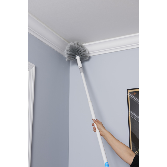 Cobweb Corner Duster Cleaning